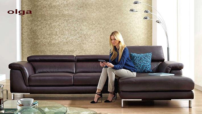 Canap contemporain en cuir olga for Chaise cuir salon