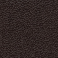 Cuir Spessorato 3007 Brown